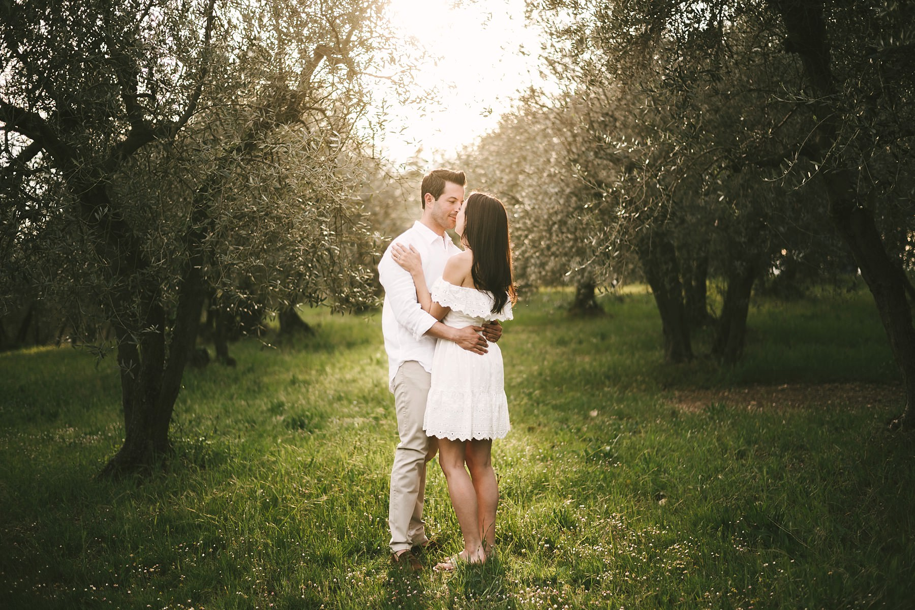 Unforgettable and charming spot into Olive trees field near Florence Chianti countryside