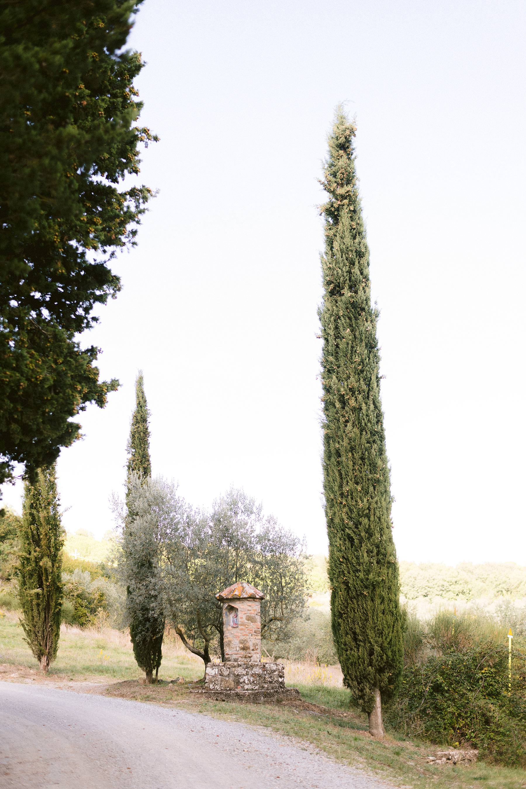 Montelucci Country Resort framed by the picturesque cypress lane and vineyard in the stunning countryside of Tuscany is a charming historic residence in between Chianti and Valdarno a perfect venue for a destination wedding